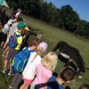 Uczniowie z wizytą u zwierząt.