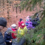 Wycieczka uczniów podstawówki do lasu.