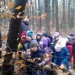Wycieczka uczniów do lasu.
