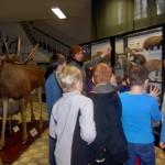 Uczniowie poznają świat roślin i zwierząt.