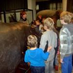 Wizyta uczniów w Ogrodzie Botanicznym