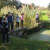 Wycieczka szkolna do ogrodu